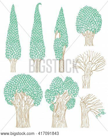 Vector Set Of Deciduous Trees Isolated On A White Background. Colored Contour Drawings Of Forest Pla