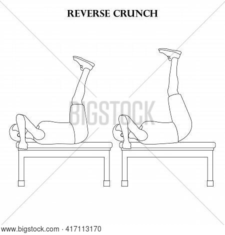 Reverse Crunch Exercise Workout Vector Illustration Outline On The White Background. Vector Illustra