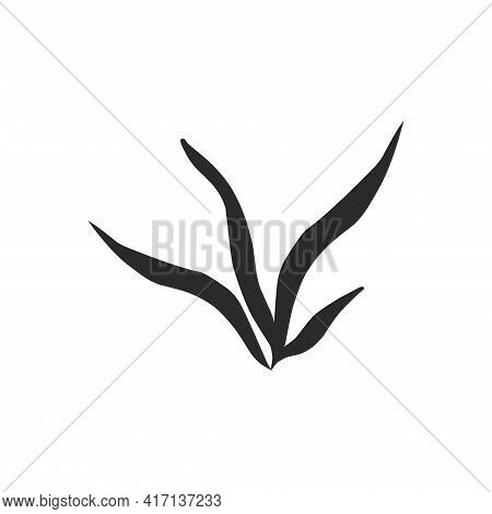 Silhouette Contour Plants Seaweed Algae Aquatic Water Plant, Grass For Aquarium. Isolated Vector Han