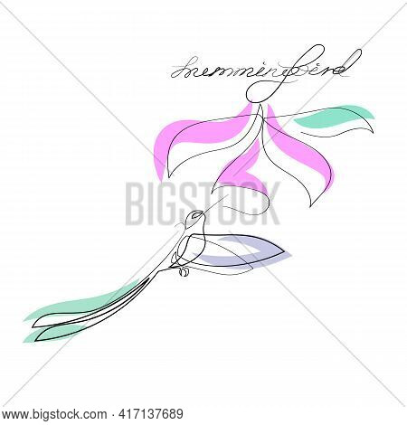 Hummingbirds And Flower, Vector Illustration, Hand Drawing Ink On White Background