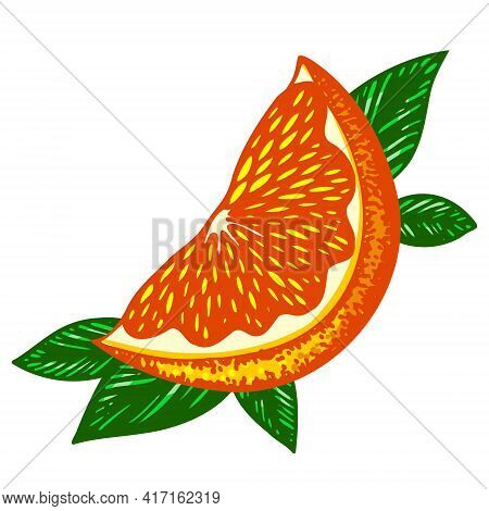 Bright Fluorescent Orange Slice Framed By Green Leaves. Vector Illustration Isolated On A White Back