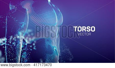 Body Builder Chest. Gym Body Builder Background. Muscle Men Breast Vector Background. Fit 3d Body Bu