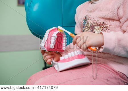 The Child Sits In The Dentist's Office And Holds An Artificial Jaw In His Hands And Brushes Her Teet