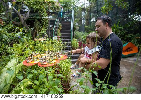 Dad And Daughter Look At Butterflies At Butterfly Garden. Father Holds A Little Toddler Girl In His