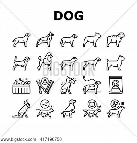 Dog Domestic Animal Collection Icons Set Vector. Yorkshire And Rottweiler, Beagle And French Bulldog