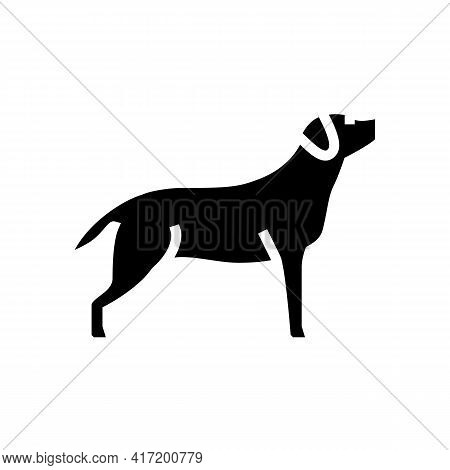 Labrador Retriever Dog Line Icon Vector. Labrador Retriever Dog Sign. Isolated Contour Symbol Black
