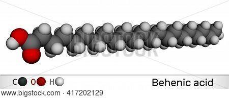 Behenic Acid, Molecule. It Is Docosanoic Acid, Straight-chain, Long-chain Saturated Fatty Acid. Mole