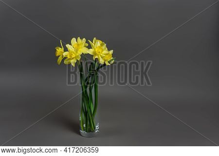 Narcissus - A Bouquet Of Flowers In A Vase, Flowers Yellow Daffodil Spring Flower Daffodil, Close-up