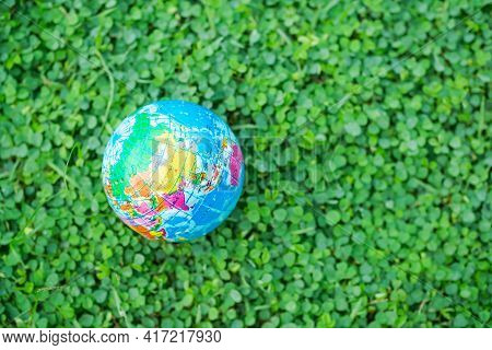 Globe Or Earth On Small Tree. Saving  Protect, Environment, Arbor Day, Card For World Earth Day,  Co