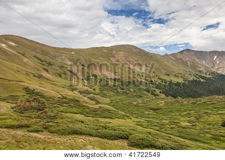 summer green alpine zone meadows of the Rocky Mountains at Loveland Pass, Colorado