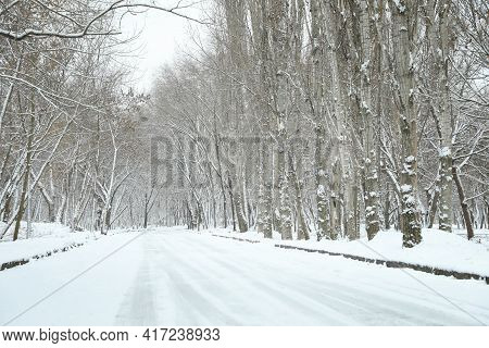 Picturesque View Of Countryside On Winter Day