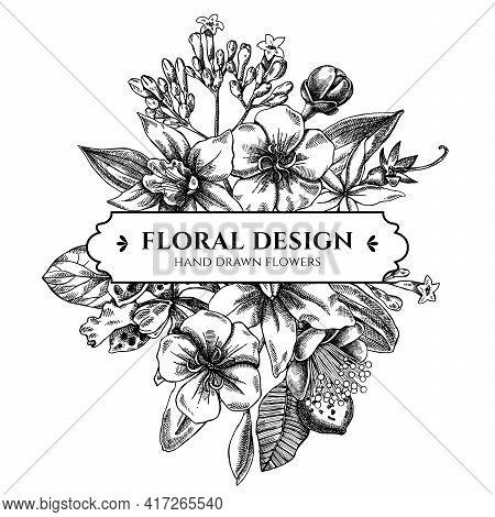 Floral Bouquet Design With Black And White Laelia, Feijoa Flowers, Glory Bush, Papilio Torquatus, Ci
