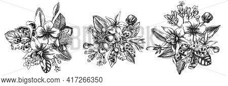 Flower Bouquet Of Black And White Laelia, Feijoa Flowers, Glory Bush, Papilio Torquatus, Cinchona, C