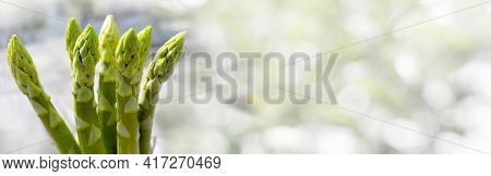 Bunch Green Fresh Asparagus In Front Of Bright Abstract Bokeh Background. Close-up For A Saisonal Ga