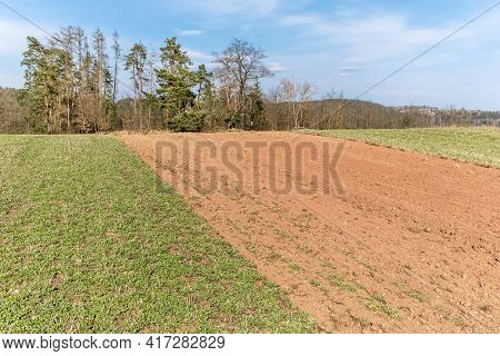 Landscape In The Countryside In The Czech Republic. Agricultural Landscape In Spring. Sunny Spring D