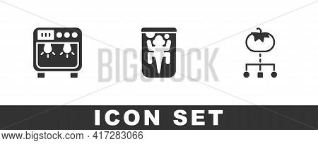 Set Biosafety Box, Experimental Animal And Genetically Modified Food Icon. Vector