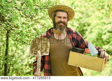 Man Bearded Hipster Collecting Harvest. Ranch Man. Organic Farm. Gardener Hold Box With Gardening To