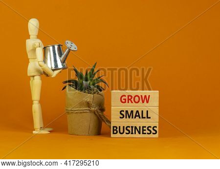 Grow Small Business Symbol. Wooden Blocks With Words 'grow Small Business'. Wooden Manequin, House P