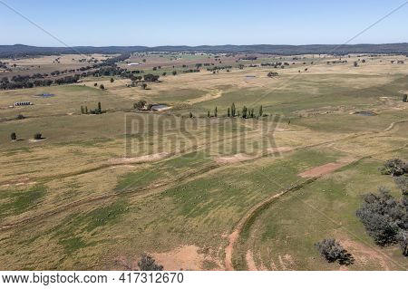 Drone Aerial Photograph Of A Herd Of Sheep Grazing In Large Agricultural Fields In Regional New Sout
