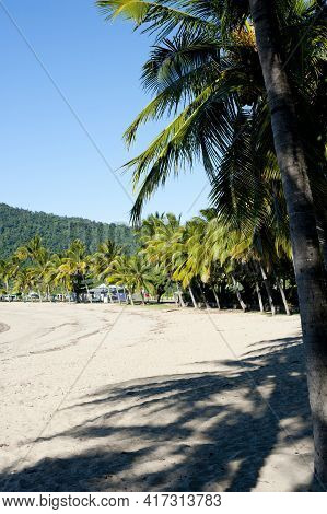 View Along A Deserted Airlie Beach, Queensland, Australia With Golden Sand Fringed With Palm Trees O