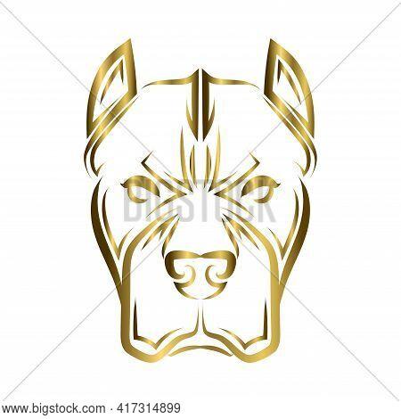 Gold Line Art Of Pitbull Dog Head. Good Use For Symbol, Mascot, Icon, Avatar, Tattoo, T Shirt Design