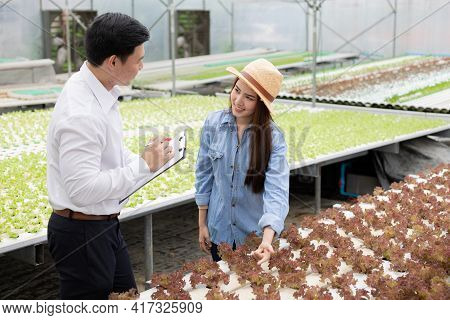 Man Inspectors Inspect And Record The Quality Of Organic Vegetables With Female Farmers Providing Gu