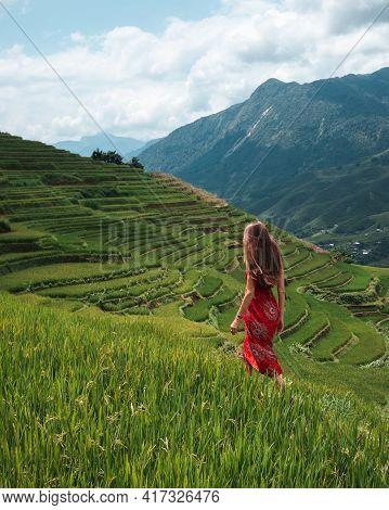 Rice Fields Vietnam - Woman Walking On The Vietnam Rice Fields