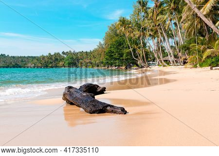 The Log Is On The Beach At Koh Kood Island, Its Emerald Sea, And Clear Blue Sky During The Day Time.