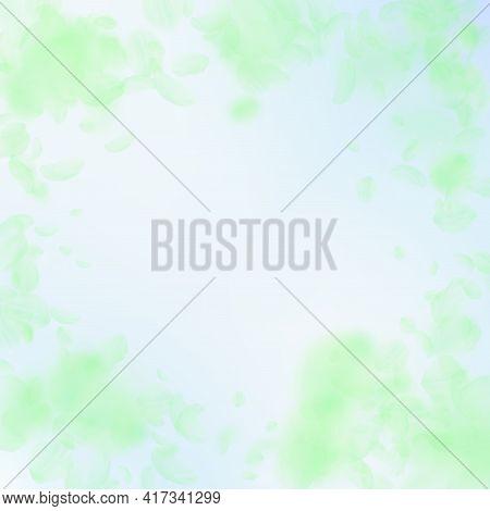 Green Flower Petals Falling Down. Good-looking Rom