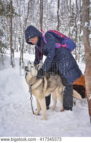 Woman In Glasses Posing With Husky Dog In Snowy Forest