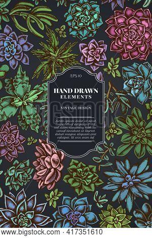 Card Design On Dark Background With Succulent Echeveria, Succulent Echeveria, Succulent Stock Illust