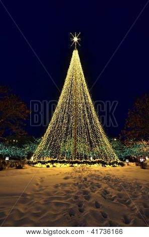 Christmas tree made up of glowing warm lights with snow