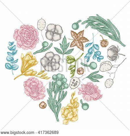 Heart Floral Design With Pastel Ficus, Eucalyptus, Peony, Cotton, Freesia, Brunia Stock Illustration