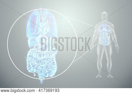 Holographic Projection Of Scanning Of Human Internal Organs. The Concept Of Modern Medicine, Digital