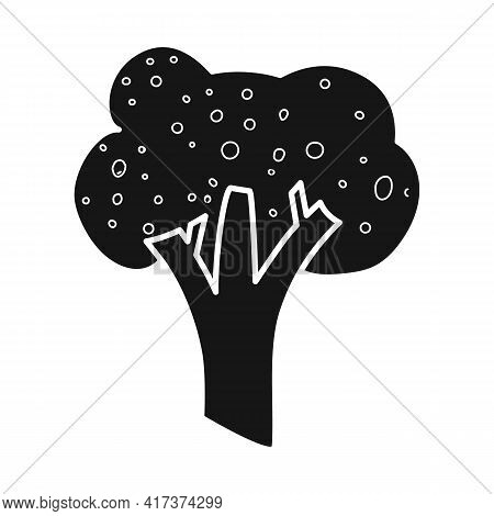 Vector Illustration Of Broccoli And Cabbage Icon. Collection Of Broccoli And Doodle Stock Vector Ill