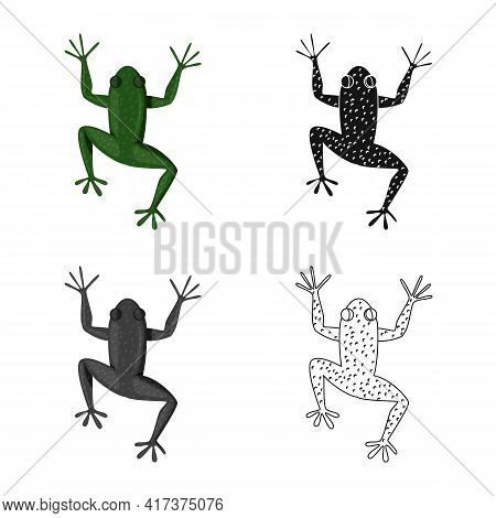 Vector Design Of Toad And Green Symbol. Set Of Toad And Toxic Stock Vector Illustration.