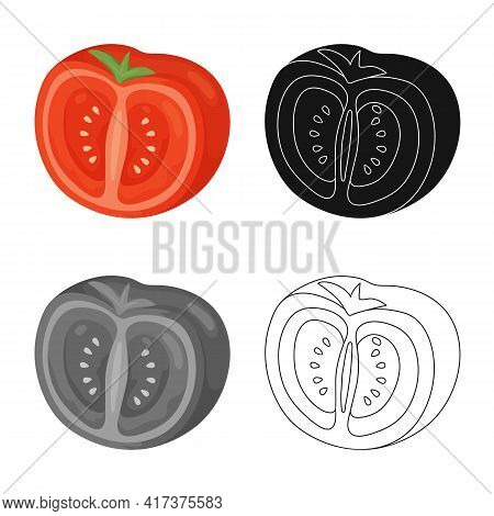 Vector Design Of Slice And Tomato Icon. Collection Of Slice And Half Stock Symbol For Web.