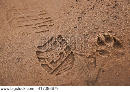 Footprints In The Wet Sand From The Sole Of An Adult's Boot And The Paw Of A Large Dog