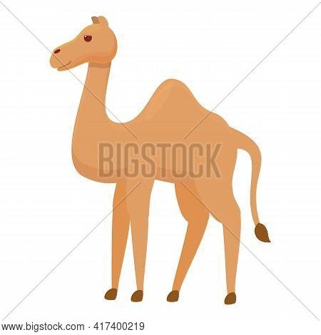 Arabic Camel Icon. Cartoon Of Arabic Camel Vector Icon For Web Design Isolated On White Background