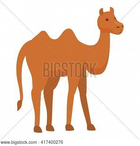 Caravan Camel Icon. Cartoon Of Caravan Camel Vector Icon For Web Design Isolated On White Background