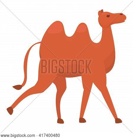 East Camel Icon. Cartoon Of East Camel Vector Icon For Web Design Isolated On White Background