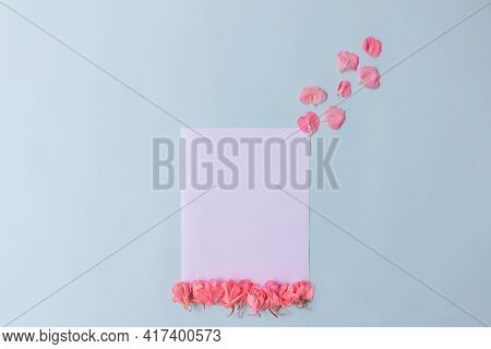 Spring Greeting Card For The Holiday. Pink Petals With A White Card On A Blue Background. A Gift For