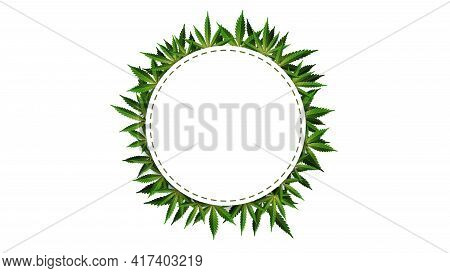 Circle Frame Of Hemp Leaves Around A White Empty Space. Cannabis Leaf Frame Template For The Cannabi
