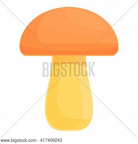 Mushroom Vitamin Icon. Cartoon Of Mushroom Vitamin Vector Icon For Web Design Isolated On White Back