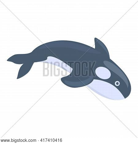 Swimming Killer Whale Icon. Cartoon Of Swimming Killer Whale Vector Icon For Web Design Isolated On