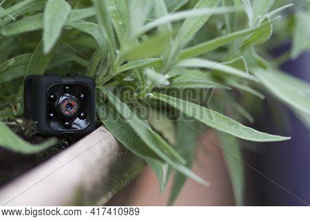 Hidden Security Camera In A Plant Pot