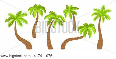 Coconut Palm Tree Flat Cartoon Set. Tropical Palm Trees, Nature Design Element. Hand Drawn Tree With