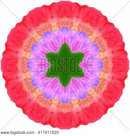 Mandala From Dried Pressed Flowers, Petals. Mandala Is Symbol Of Buddhism, Hinduism, Yoga. Ornament