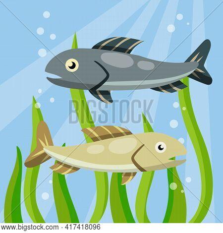 Underwater Life. Water With Algae. Wildlife And Aquarium. Element Of Fishing. Cartoon Flat Illustrat