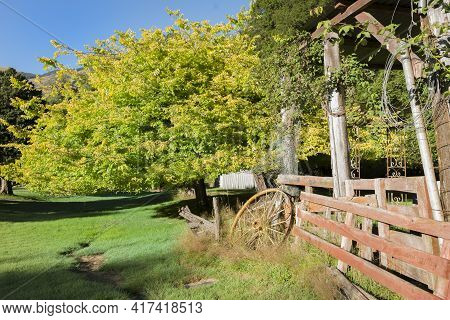 Old Buildings And Wagon Wheel Among Large Trees With Bright Green And Yellow Foliage.